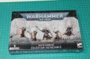 Brueckenkopf Online Warhammer 40.000 Celestia Sacresantis Review 1