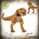 TTCombat Rumbleslam Triassic5 03