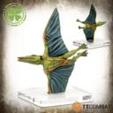 TTCombat Rumbleslam Triassic5 07