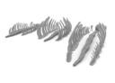 Imperial Terrain Desert Dragon Skeleton 4